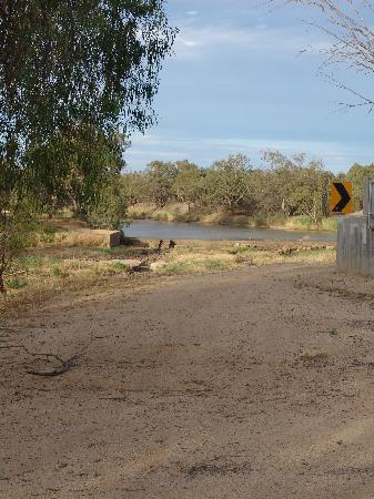 Brewarrina, Australia: The dam that is key to the local cotton farming industry as well as the survival of the Barwon R