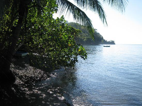 Golfo Dulce Lodge: Strand der Lodge