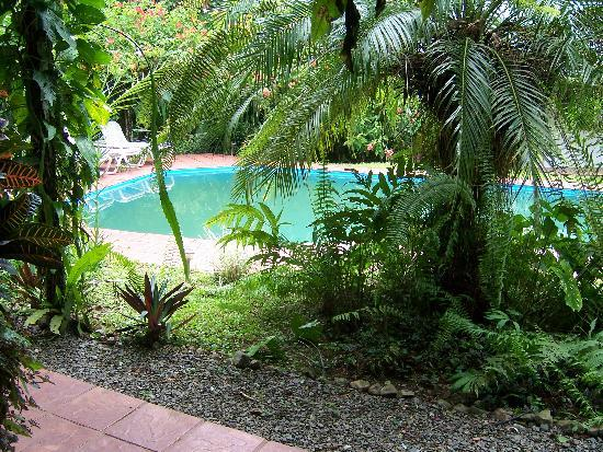 Golfo Dulce Lodge: Pool