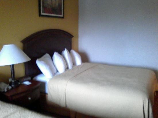 Quality Inn & Suites Dayton South / Miamisburg: Bed