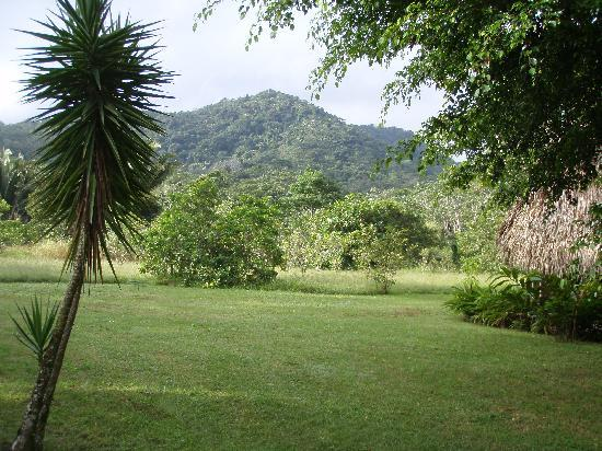 Bocawina Rainforest Resort & Adventures: View from grounds of Mama Noots