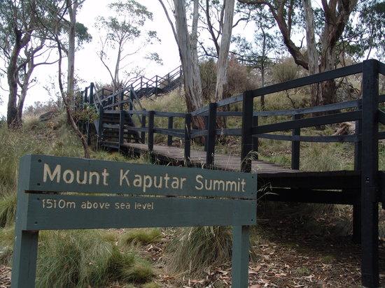 Mt Kaputar National Park