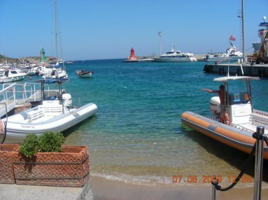 Talamone, Italy: porto dell'isola del giglio