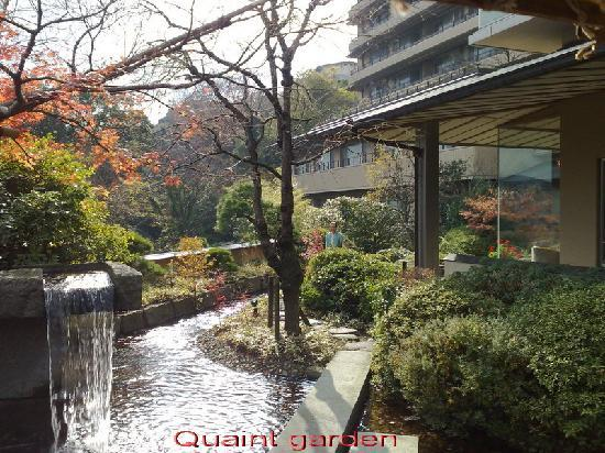 seizan yamato quaint little garden - Little Garden