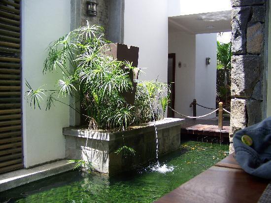 Laguna Beach Hotel & Spa: vue depuis le restaurant