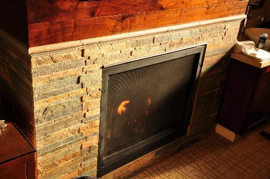 Hotel Abrego: Fireplace in room
