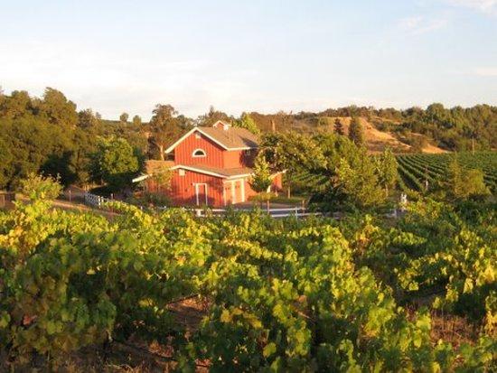 Photo of Healdsburg Country Gardens