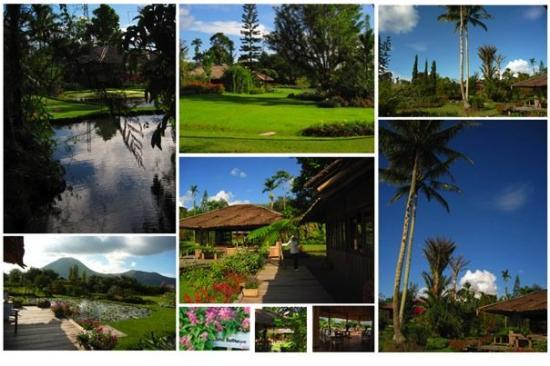 Manado, Indonesië: Gardenia Country Inn, tamannya kereen banget, bawaannya gak pengen pulang kalo udah masuk kesini