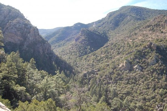 Sierra Vista, AZ: Ramsey Canyon