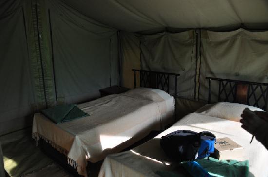 Serengeti Medium Camp: Inside of our tent at Medium Camp.