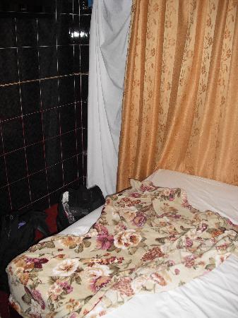 Sabrina Golden Palace Hotel: Bedsheet for a Curtain