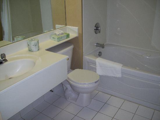 Peterborough Inn & Suites Hotel: Bagno