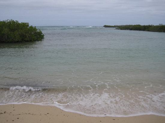 Finch Bay Galapagos Hotel: Beach