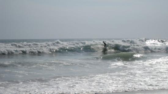 Surf - Nosara