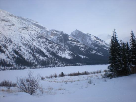 Snowy Owl Sled Dog Tours: Dog Sledding Venue - Dec 13 - Canmore, Alberta - Temperature was -22F = FREEZING!!!!