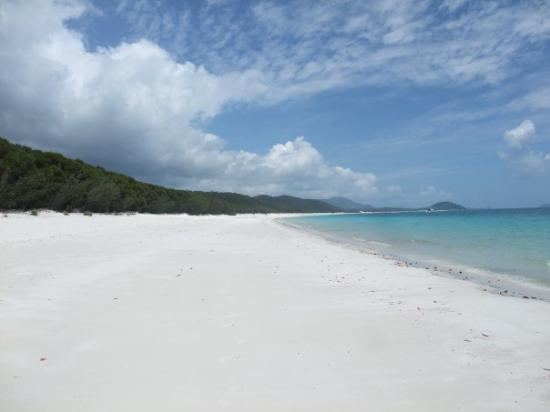 """Whitehaven Beach: Whithaven beach. Voted #1 best beach in the world, guiness book of records for """"Whitest sand on"""