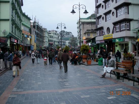 Hotel Asian Heights M G Road Gangtok