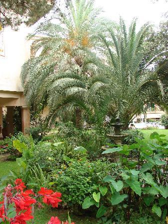 Lago Garden Hotel: Bepflanzung bei Rezeption