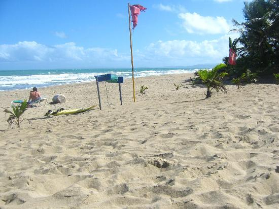 Hotel Celuisma Cabarete: Beautiful beach