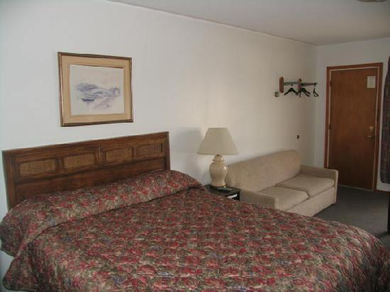 Seven Oakes Motel: Brand new beds