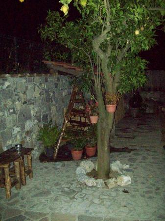 Residence Casale Nunziatina: Outside by night