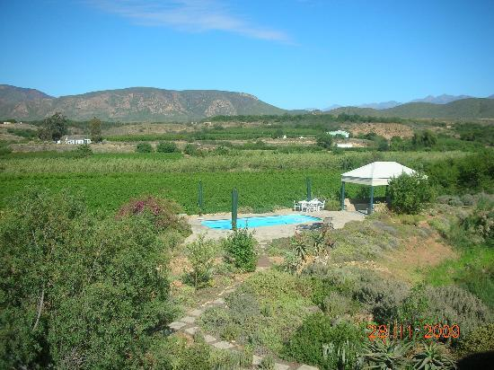 Calitzdorp, South Africa: looking out towards the vineyards
