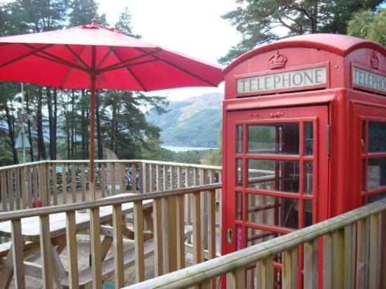 Foyer House Loch Ness : Red squirrel cafe fall of foyer scotland picture