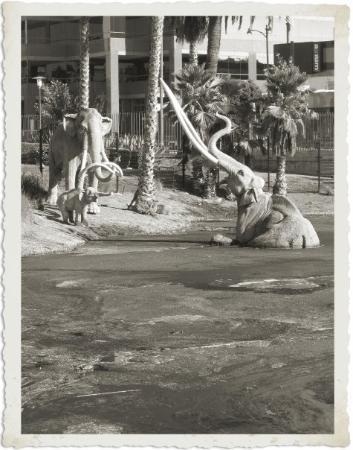 La Brea Tar Pits and Museum: Los Angeles, CA