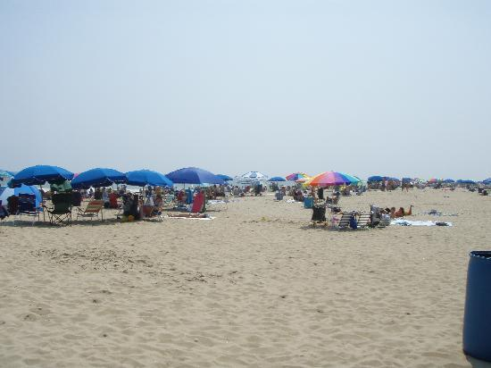 Ocean City, MD: A crowded beach in late August
