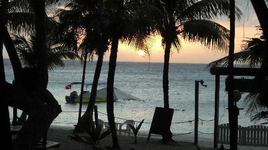 Bananarama Beach and Dive Resort: View