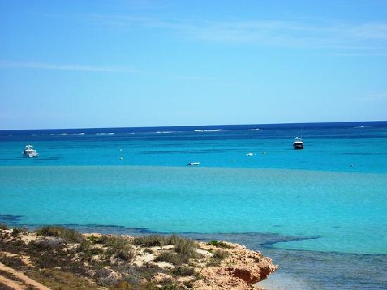 Things To Do in Ningaloo Visitor Centre, Restaurants in Ningaloo Visitor Centre