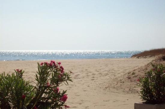 Manfredonia, İtalya: Settembre in Puglia
