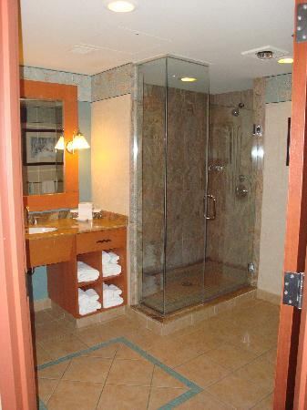 Seneca Niagara Resort U0026 Casino: Awesome Shower!