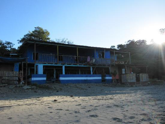 Buena Vista Surf Club: Surf shop on the Beach- Ask for Johnny for lessons! He's awesome