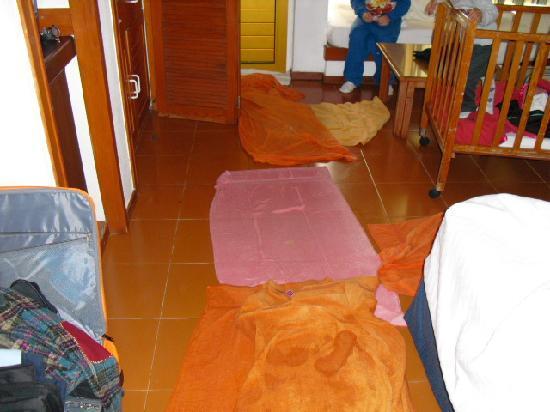 هوتل بايا كريستال: inundados