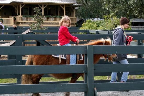 Pony Ride at Lawton Stables