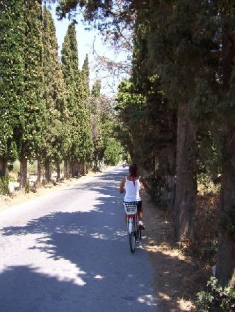 Kos, Hellas: bike ride back down