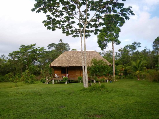 Belize City, Belize: Nature Resort - Community Baboon Sanctuary