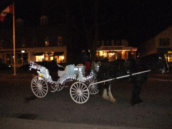 Annette Twining House: romantic carriage ride