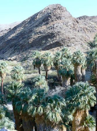 Little Paradise Hotel: Indian Canyons: 3 miles from Queen of Hearts