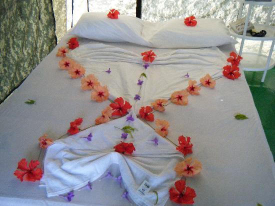 Corcovado Adventures Tent Camp: Staff Hospitality