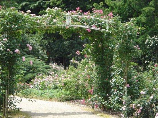 Nells Park Hotel : garden walk next to hotel