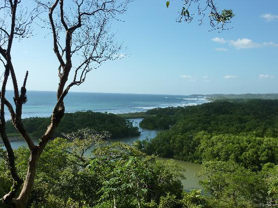 Nosara, Costa Rica: View From Lodge at Biological Reserve