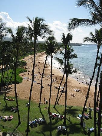 Mana Kai Maui: Public beach - view from #503