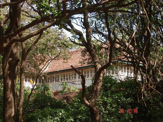Fleetwood House: Main bungalow