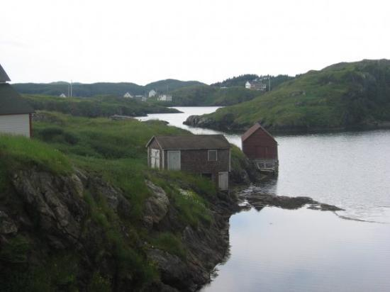 Twillingate, Canada : Salt Harbour