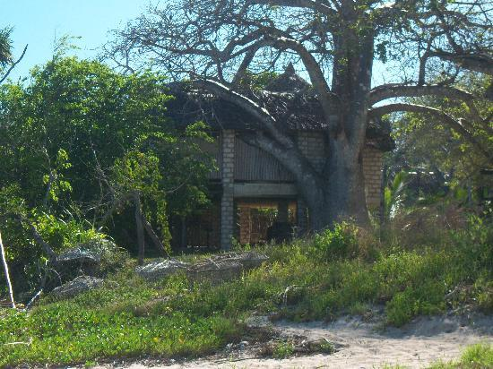 The Cove Treehouses: our treehouse no 2