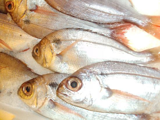 Pierluigi: If the eyes are clear, the fish is fresh.