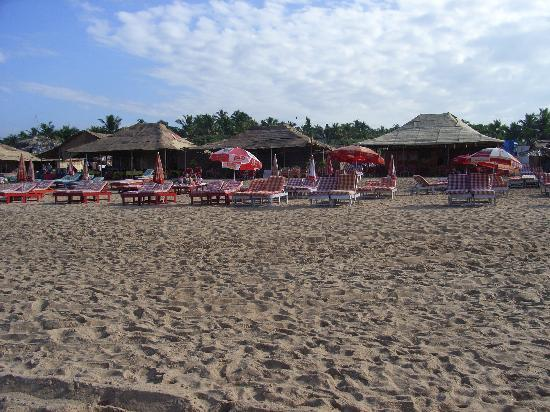 Hotel Dona Terezinha : beach shacks
