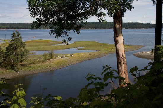 Island Estuary B&B Image